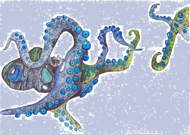 Octopus 4