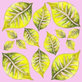 pinkplants1