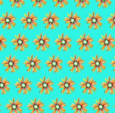 flowers11forsocial